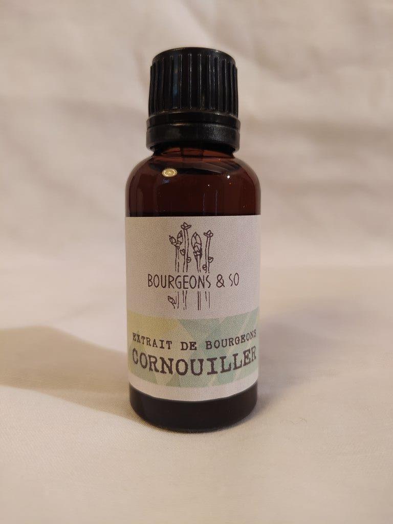 CORNOUILLER SANGUIN – Extrait de bourgeons